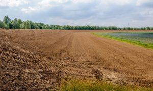 pacht landbouwgrond bestemmingsplan bouwgrond