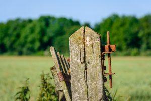 gedoogplicht milieu effect rapport MER omgevingsvergunning landbouw