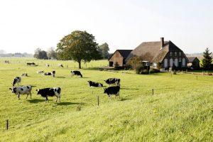 plattelandswoning pacht erfpacht gedoogplicht bedrijfsoverdracht bedrijfsopvolging agri agrarisch